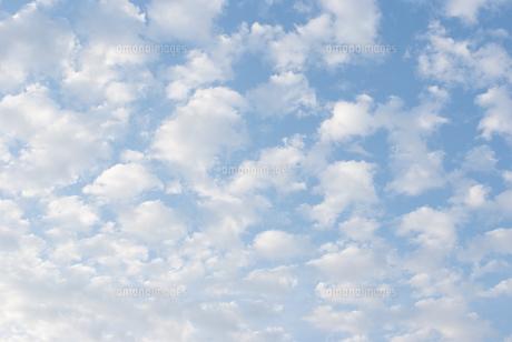 雲の写真素材 [FYI00325002]