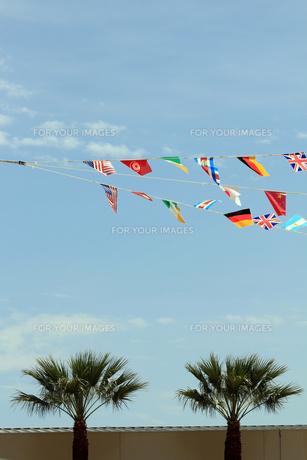 運動会の国旗の写真素材 [FYI00325089]