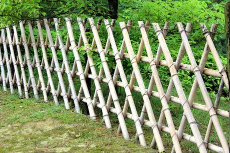 竹柵の素材 [FYI00325118]