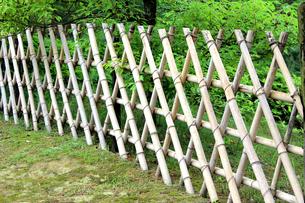 竹柵の写真素材 [FYI00325118]