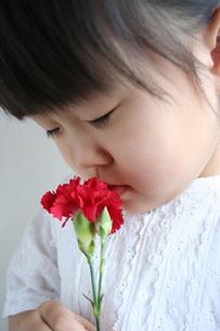 カーネーションと女の子の写真素材 [FYI00325157]