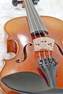 バイオリンの写真素材 [FYI00325404]