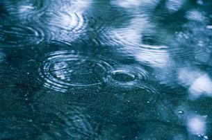 雨音の写真素材 [FYI00325543]
