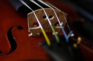 オールドフレンチ・ヴァイオリンの写真素材 [FYI00325560]