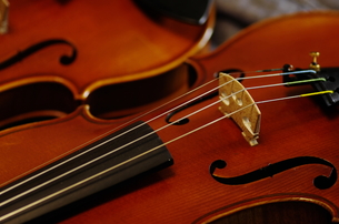 ヴァイオリンの写真素材 [FYI00325562]