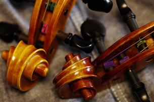 ヴァイオリンのヘッドの写真素材 [FYI00325565]