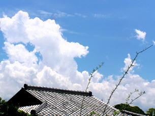 湧き上がる夏の雲の写真素材 [FYI00325575]