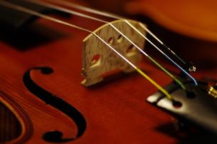 オールド・フレンチヴァイオリンの写真素材 [FYI00325597]