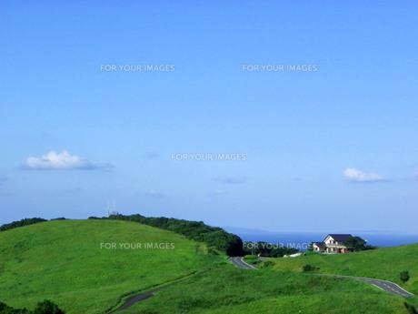 秋の草原と道の写真素材 [FYI00325618]