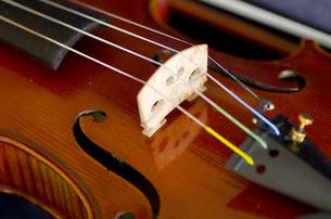 オールド・フレンチヴァイオリンの写真素材 [FYI00325621]