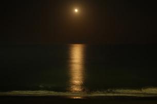 満月の海の写真素材 [FYI00325646]