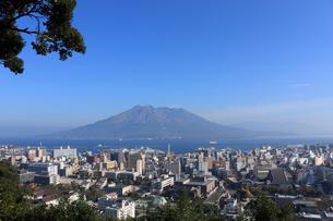 桜島の写真素材 [FYI00325828]