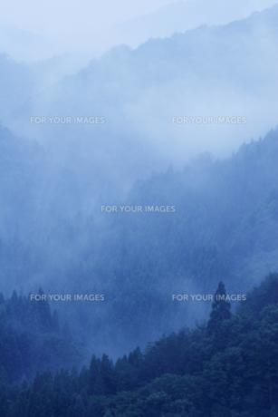 山霧の写真素材 [FYI00327675]