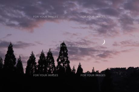 夕景の三日月の写真素材 [FYI00327695]