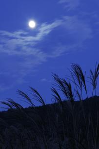 すすきに月の写真素材 [FYI00327716]