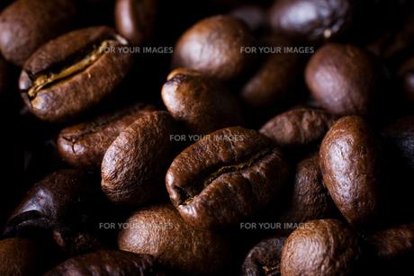 コーヒー豆のアップの素材 [FYI00327724]