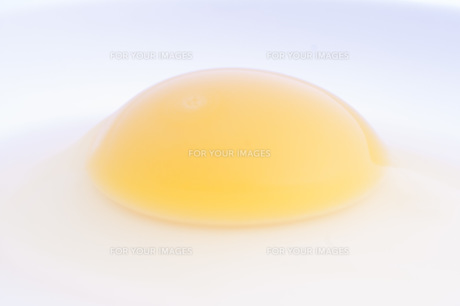 烏骨鶏の卵の素材 [FYI00327747]