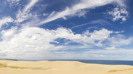 晴れの鳥取砂丘の素材 [FYI00327789]