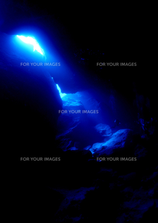 光のシャワーの写真素材 [FYI00327929]