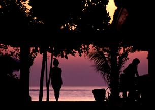 夕景の写真素材 [FYI00327934]