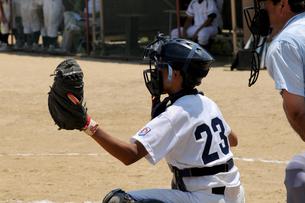 野球の写真素材 [FYI00327998]