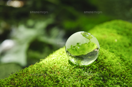 木漏れ日の中のガラスの地球儀の写真素材 [FYI00328090]