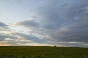 夕暮れの丘の写真素材 [FYI00328101]