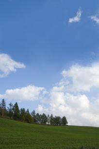 丘陵の青空の写真素材 [FYI00328121]