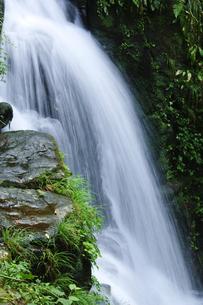 森の中の小滝の写真素材 [FYI00328144]