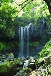 新緑のマックラ滝の写真素材 [FYI00328154]
