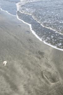 波打ち際の足跡の写真素材 [FYI00328180]