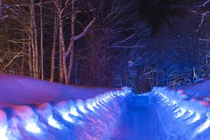 ライトアップの雪道の写真素材 [FYI00328380]