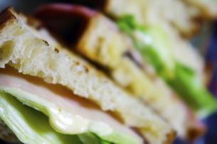 サンドイッチの写真素材 [FYI00328630]