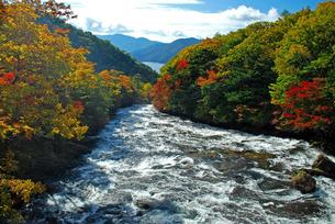 竜頭の滝より中禅寺湖を望むの写真素材 [FYI00328647]