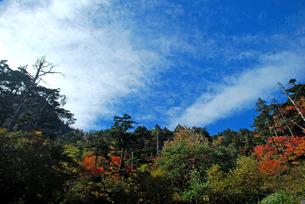 紅葉と雲の写真素材 [FYI00328659]