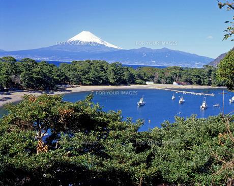 クルーザーと富士の写真素材 [FYI00328684]