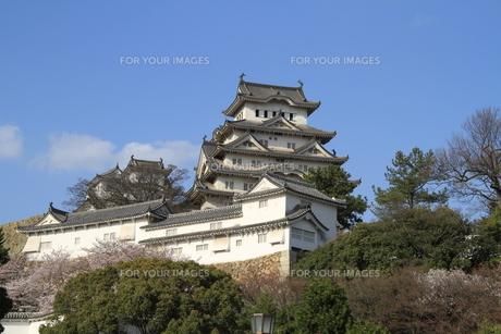 国宝姫路城の写真素材 [FYI00328748]