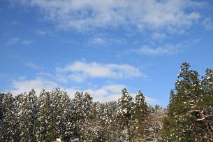 雪国の青空の素材 [FYI00328929]