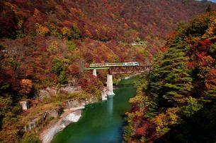 会津の紅葉とトロッコ列車の写真素材 [FYI00329270]