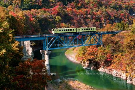会津の紅葉と気動車の写真素材 [FYI00329271]