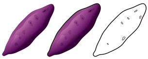 サツマイモの写真素材 [FYI00329358]