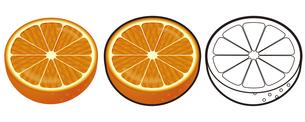 オレンジの写真素材 [FYI00329373]