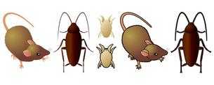 害虫の写真素材 [FYI00329383]