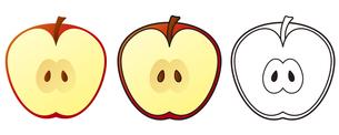 リンゴの写真素材 [FYI00329391]