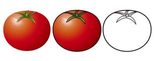 トマトの写真素材 [FYI00329398]