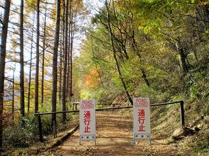 権兵衛峠旧道の秋、通行止の写真素材 [FYI00329501]