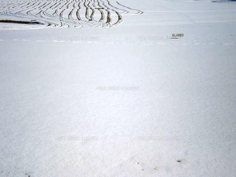 雪のゴルフ場、closedの写真素材 [FYI00329536]