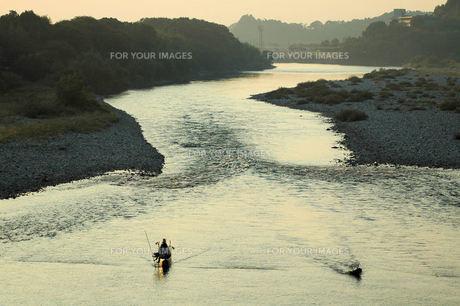長良川、落ち鮎漁、瀬張り漁の素材 [FYI00330452]