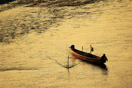 長良川、夕暮れの瀬張り漁の素材 [FYI00330461]