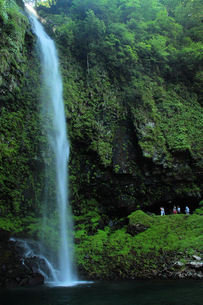 阿弥陀ヶ滝、全景の写真素材 [FYI00331206]